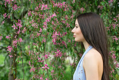Woman stands in profile near a flowering tree Royalty Free Stock Images