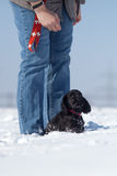 Woman educate her puppy. Woman stands in the snow and educate her cocker spaniel puppy Stock Photo