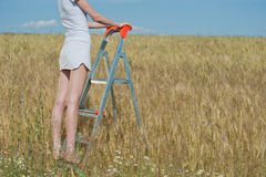 Woman stands on the stepladder Stock Image