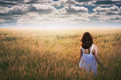 Woman staring at a dramatic sky. In a golden field . Sunset light Stock Images