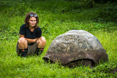 Woman staring intently at Galapagos giant tortoise Stock Image