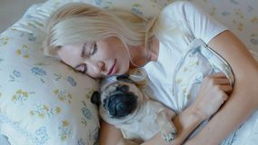 Woman stay in bed with puppy pug