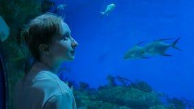 Woman stay near big aquarium tank, watching the fish. Tourism and entertaiment concept Stock Photos
