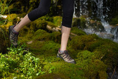Woman stepping on soft moss Royalty Free Stock Photo