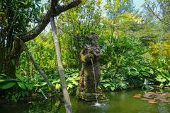 A woman stone statue on the garden park bali pouring water on the lake with green tree and grass on background - photo stock photography