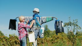 The woman straightens the scarecrow. Rural life and work on the farm concept stock video footage