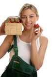 Young woman with box of strawberries Stock Images