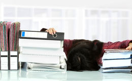 Woman stress in the office Stock Photo
