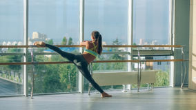 Woman stretching her leg at the barre Stock Image