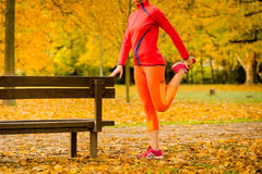 Woman stretching before jogging Royalty Free Stock Photography