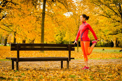 Woman stretching before jogging Stock Images