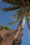 Woman stretching and relaxing her suntanned legs on palm tree. At the beach Stock Photos