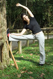 Woman Stretching By a Tree - Vertica Royalty Free Stock Photography