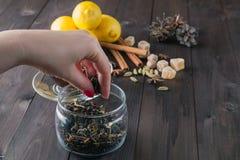 Woman strew herbal tea Royalty Free Stock Image