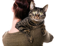 Woman with a striped cat Royalty Free Stock Photos