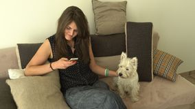 Woman stroking her dog pet while using smartphone sitting on sofa. Handheld. Motion shot stock video footage