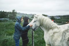 A woman stroking a horse Stock Images