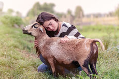 Woman is stroking a sheep Royalty Free Stock Photos