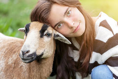 Woman is stroking a sheep Royalty Free Stock Photo