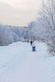 A woman with a stroller walking on snow-covered Park. In the city in winter Royalty Free Stock Images