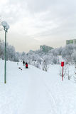 A woman with a stroller walking on snow-covered Park. In the city in winter Royalty Free Stock Image