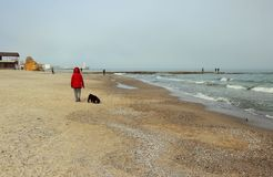 Woman strolling along the beach with the dog Royalty Free Stock Image