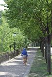 Colorfully dressed woman walking along the Mississippi River in Minnesota. Woman strolls beneath the Summer trees in Minneapolis, Minnesota along the royalty free stock image