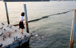 Woman student feeding fish at port Royalty Free Stock Photography