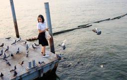 Woman student feeding fish at port Stock Image
