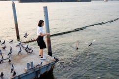 Woman student feeding fish at port Royalty Free Stock Photo
