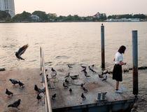 Woman student feeding fish at port Stock Photo