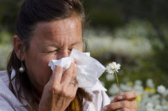 Woman suffering Hay Fever. A mature woman in field of wildflowers is suffering hay fever and is snoozing into a tissue Stock Photos