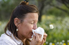 Woman suffering Hay Fever. A mature woman in field of wildflowers is suffering hay fever and is snoozing into a tissue Royalty Free Stock Photos