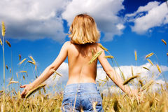 Woman in a summer field. Beautiful young woman in a summer field against the blue sky Royalty Free Stock Images