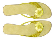 Woman summer shoes Royalty Free Stock Photo