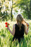 Woman in a summery field Stock Photos