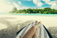 Woman on sunbed under palm tree Royalty Free Stock Photo
