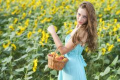 Woman in sunflower chain with a basket of fruit Stock Image