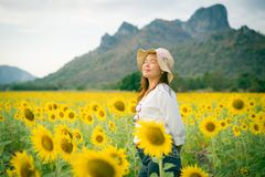 Woman in sunflower field. Healthy food product. Woman smiling in sunflower field. Organic healthy food production for Health care and agriculture business Stock Image