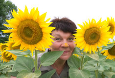 Woman in sunflowers Stock Images