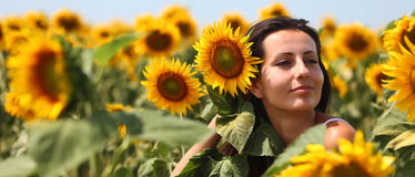 Woman with sunflowers in hair royalty free stock photos