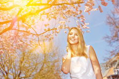 Woman on sunny day under cherry tree in spring Royalty Free Stock Photos
