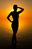 Woman in sunrise light. Ocean woman in sunrise light royalty free stock photos