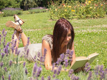 Woman, sunshine, lavender. Young red woman reading a book lying on the green grass Stock Images