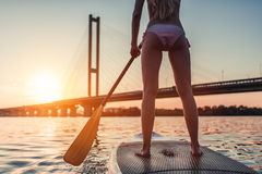 Woman on SUP board. Cropped image of woman on stand up paddle board. Having fun on SUP board during sunset. Active lifestyle Stock Image
