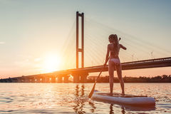 Woman on SUP board. Woman on stand up paddle board. Having fun on SUP board during sunset. Active lifestyle Royalty Free Stock Photos