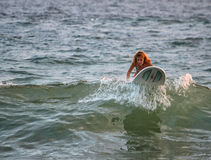 Woman surfing. The waves at Hikkaduwa, Sri Lanka royalty free stock photography