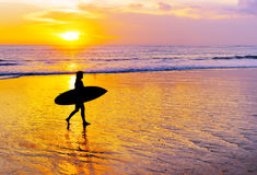 Woman surfing on tropical island Royalty Free Stock Photos