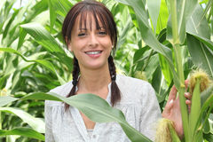Woman surrounded by plants Royalty Free Stock Images