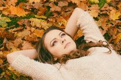 Woman in Sweater Laying on Dried Maple Leaves Stock Images